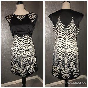 Limited zebra 🦓 dress: 10